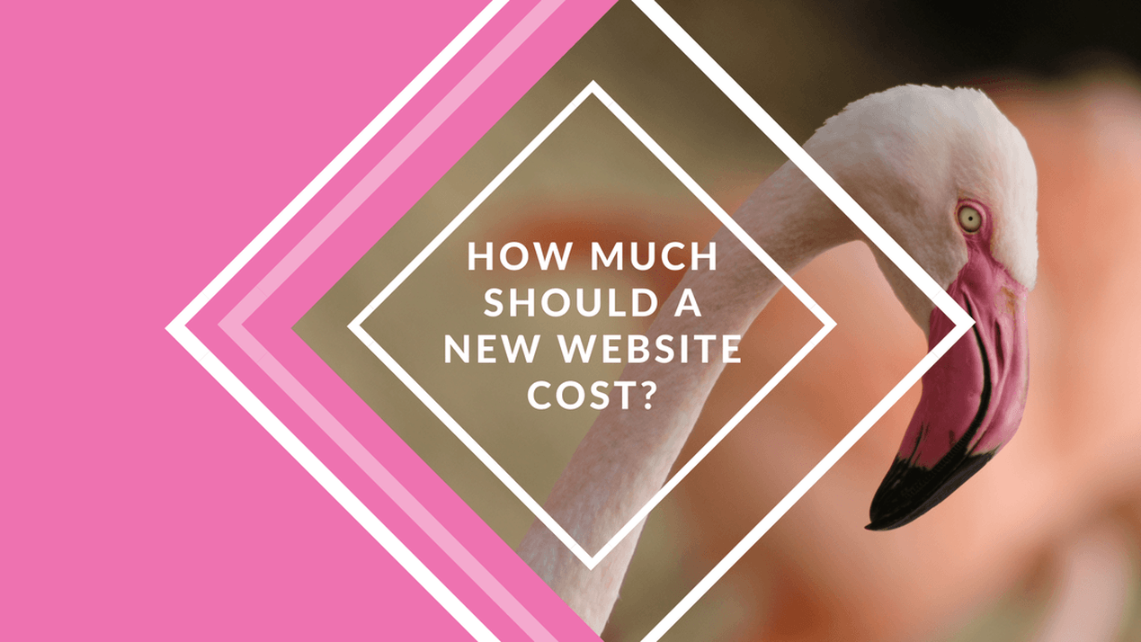 How much should a new website cost?